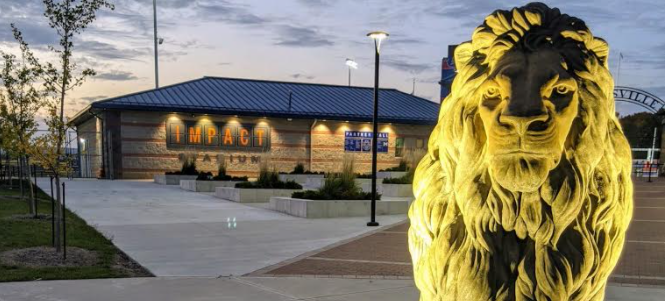 IMPACT Stadium and lion at night