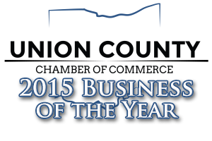 2015 business of the year